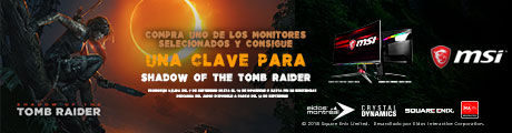 MSI Tomb Raider Banner