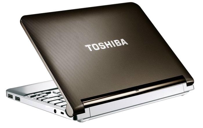Toshiba hace oficial el NB200 en España, Imagen 1