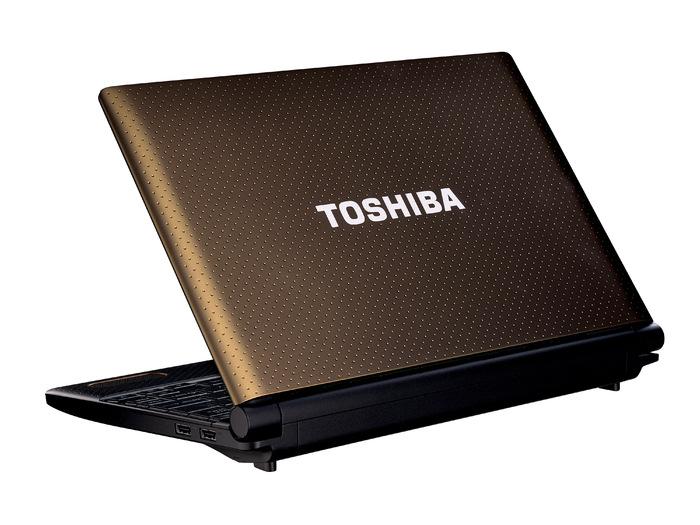 Nuevos netbooks NB500 y NB520 de Toshiba, Imagen 1