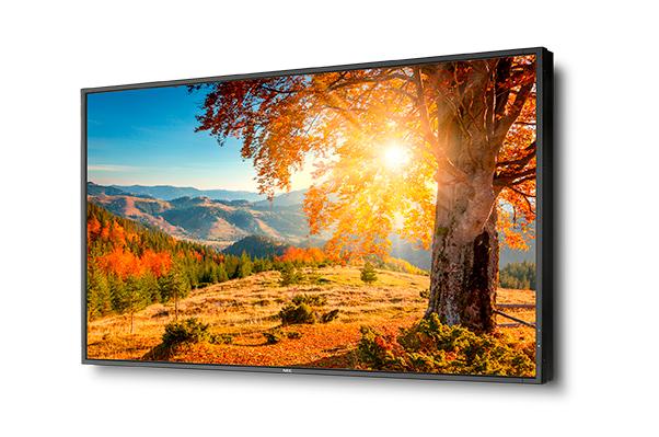 NEC se atreve con una pantalla de 75 pulgadas FullHD y 2.500 cd/m² de brillo máximo, Imagen 1