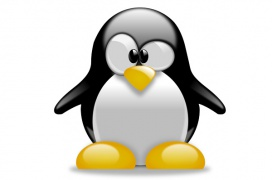 Modificaciones en el parche STBIP del kernel 4.20 de Linux anulan la penalización de rendimiento