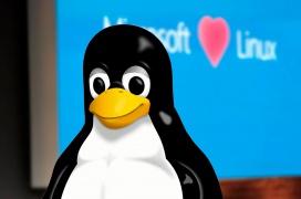 Microsoft abre su sistema de archivos exFAT incluyendo soporte nativo para el kernel de Linux