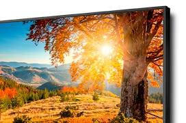 NEC se atreve con una pantalla de 75 pulgadas FullHD y 2.500 cd/m² de brillo máximo