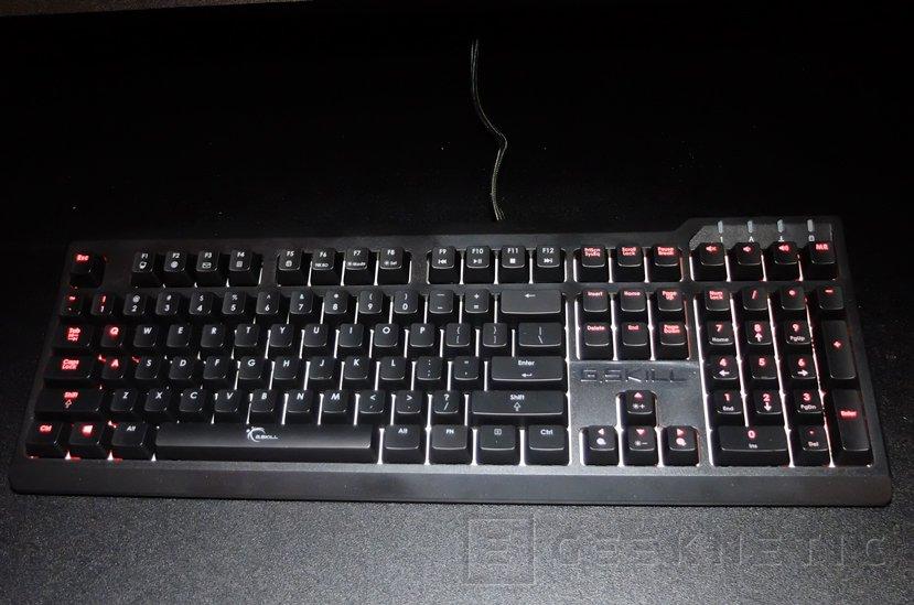 Nuevos teclados mecánicos G.SKILL Rijpaws KM570 y KM770 , Imagen 2
