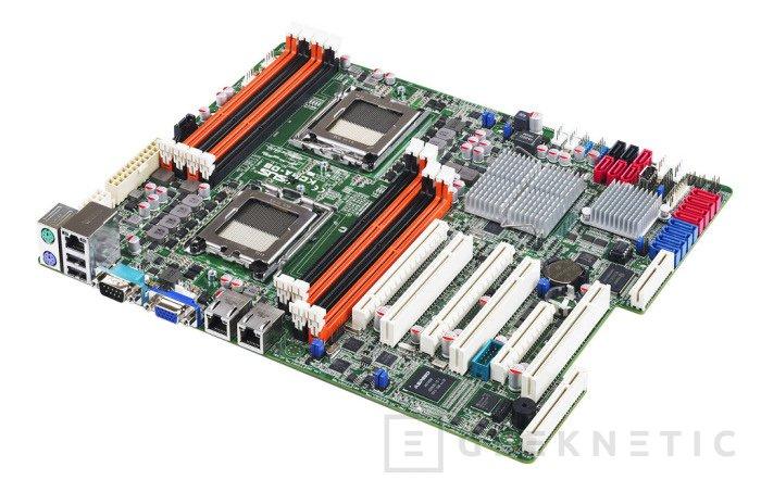 ASUS presenta dos nuevas placas base para servidores Opteron, Imagen 1