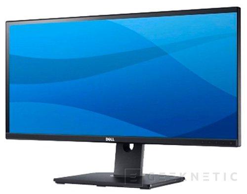 Monitor DELL UltraSharp U2913WM, Imagen 1