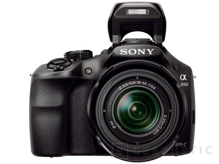 Sony a3000, una cámara sin espejo con el aspecto y el tamaño de una DSLR, Imagen 2
