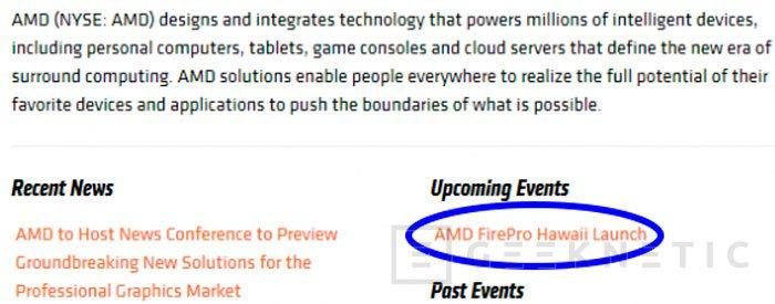 AMD utilizará una GPU Hawaii en su próxima gráfica FirePro para el mercado profesional, Imagen 2