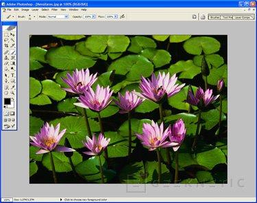 [SIMO] Adobe nos presenta sus nuevos productos profesionales y de consumo, Imagen 3