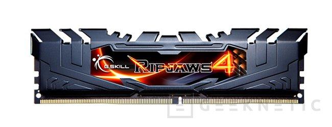 Los módulos de DDR4 más rápidos de G.Skill ya llegan a los 3.666 MHz, Imagen 1